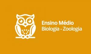Ensino Médio - Biologia - Zoologia