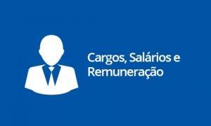 Cargos, Salários e Remuneração